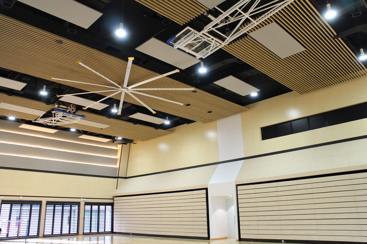 Multi Purpose Hall Ceiling Treated With Timberix