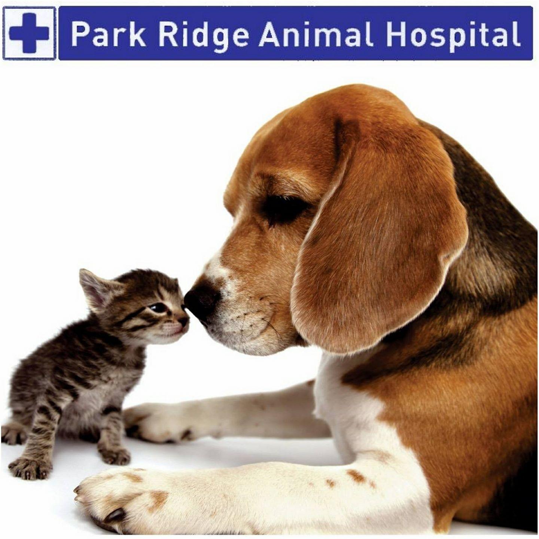 Park Ridge Animal Hospital
